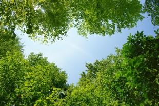 環境への取組みのイメージ